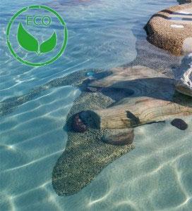 piscine-bio